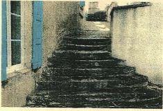 Rue de navreau